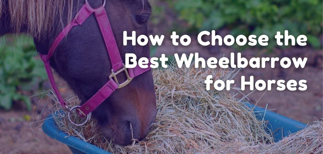 How to Choose the Best Wheelbarrow for Horses