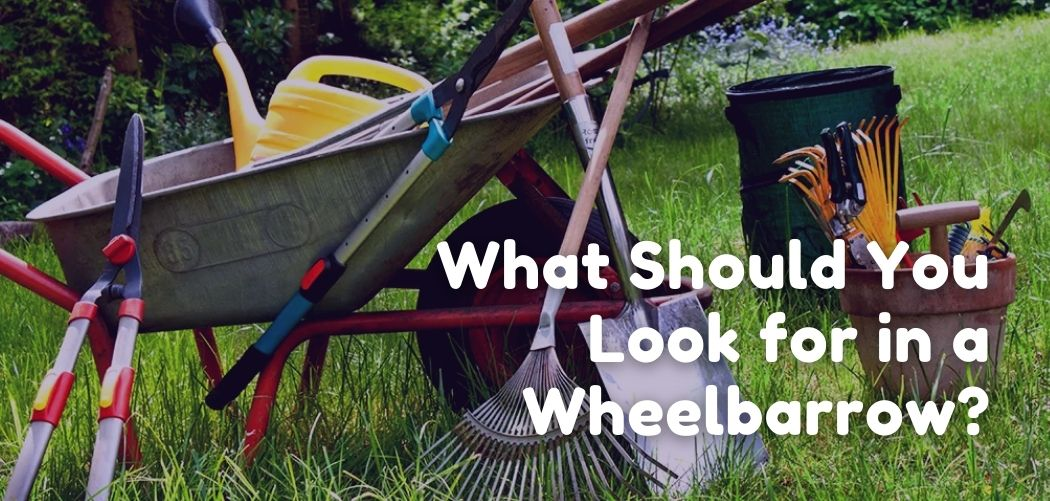 What Should You Look for in a Wheelbarrow?