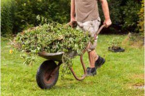 Will A Lightweight Wheelbarrow Meet My Needs
