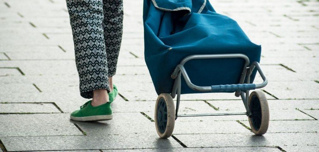 Best Shopping Trolleys 2021 - Buyers Guide