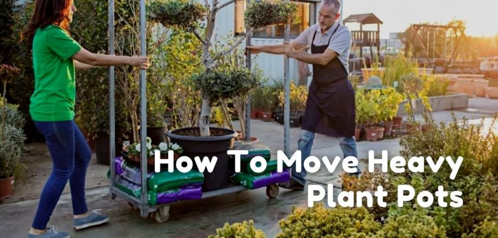 how to move heavy plant pots